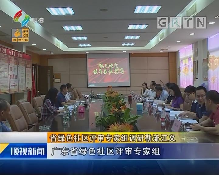 省绿色社区评审专家组调研勒流江义