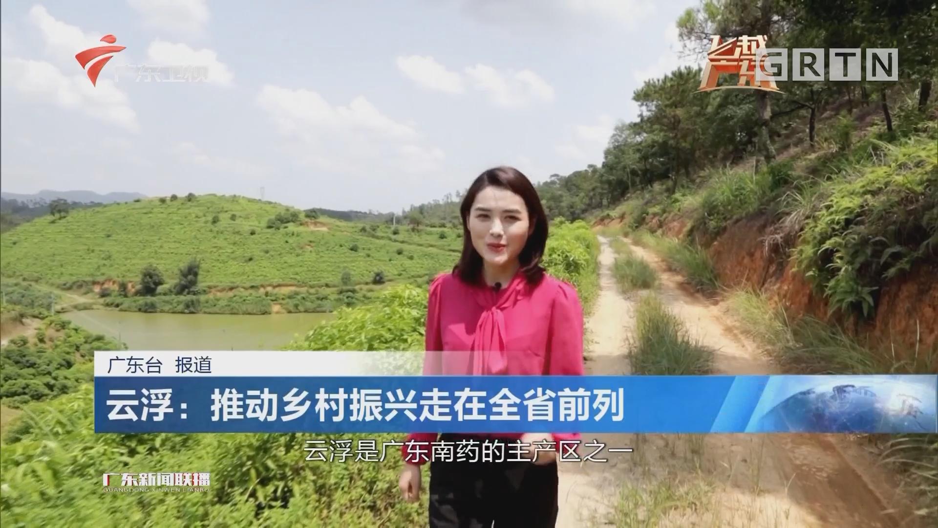 云浮:推动乡村振兴走在全省前列