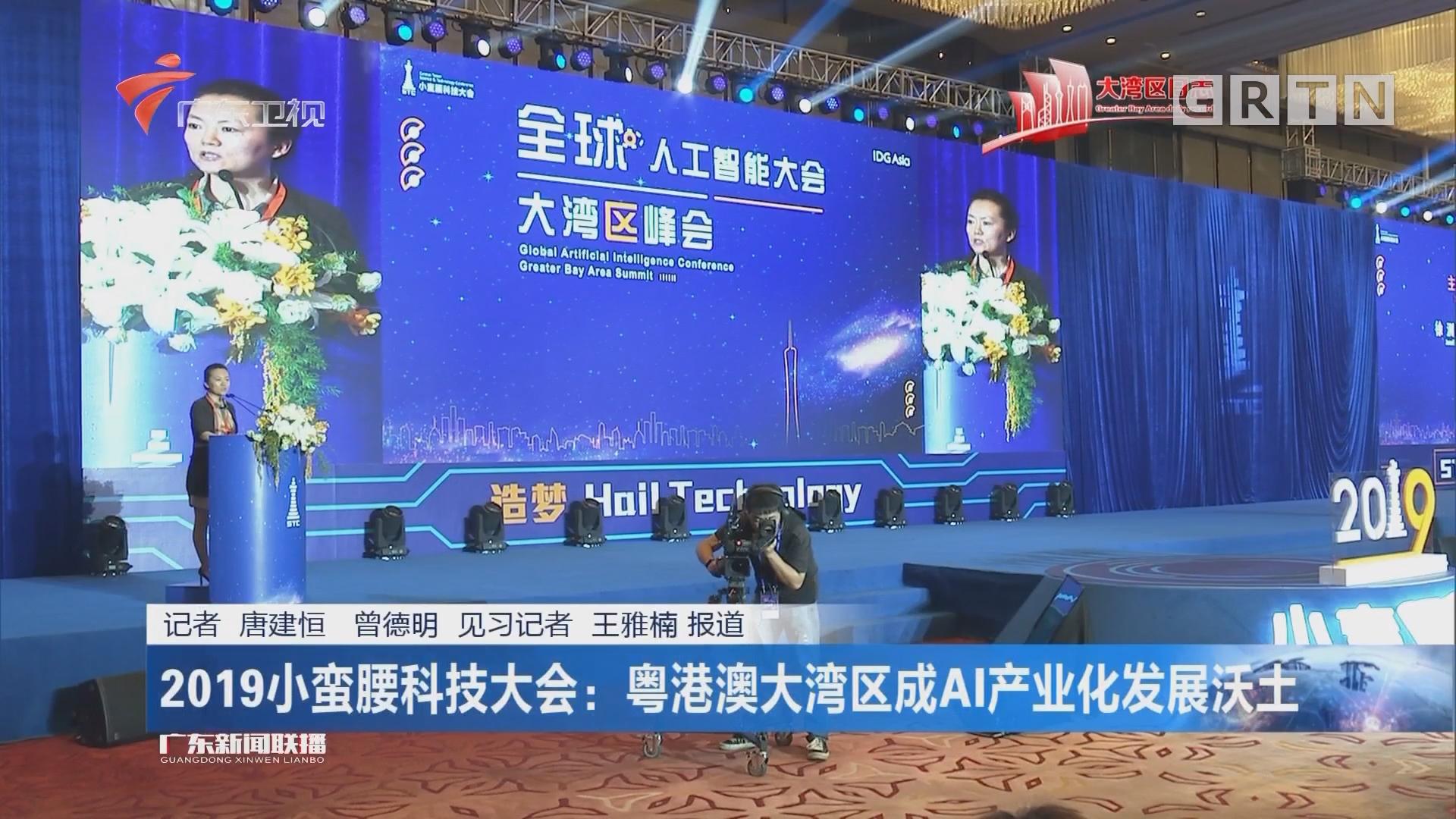 2019小蛮腰科技大会:粤港澳大湾区成AI产业化发展沃土