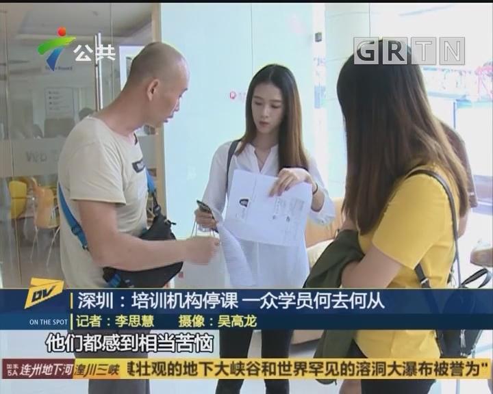 (DV现场)深圳:培训机构停课 一众学员何去何从