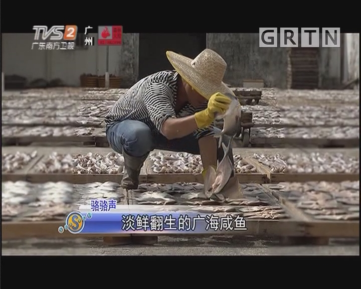 駱駱聲:淡鮮翻生的廣海咸魚
