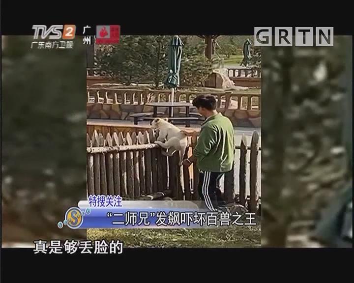 """""""二师兄""""发飙吓坏百兽之王"""