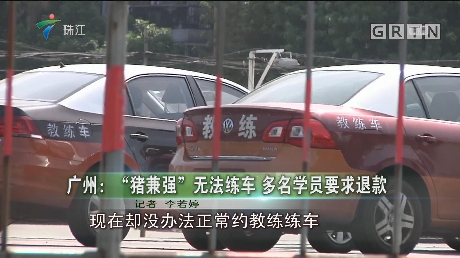 """广州:""""猪兼强"""" 无法练车 多名学员要求退款"""