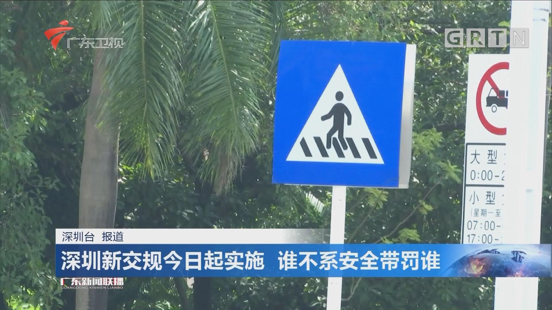 深圳新交规今日起实施 谁不系安全带罚谁