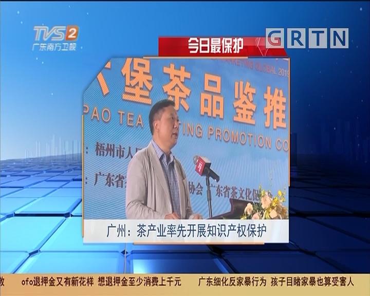 今日最保护 广州:茶产业率先开展知识产权保护