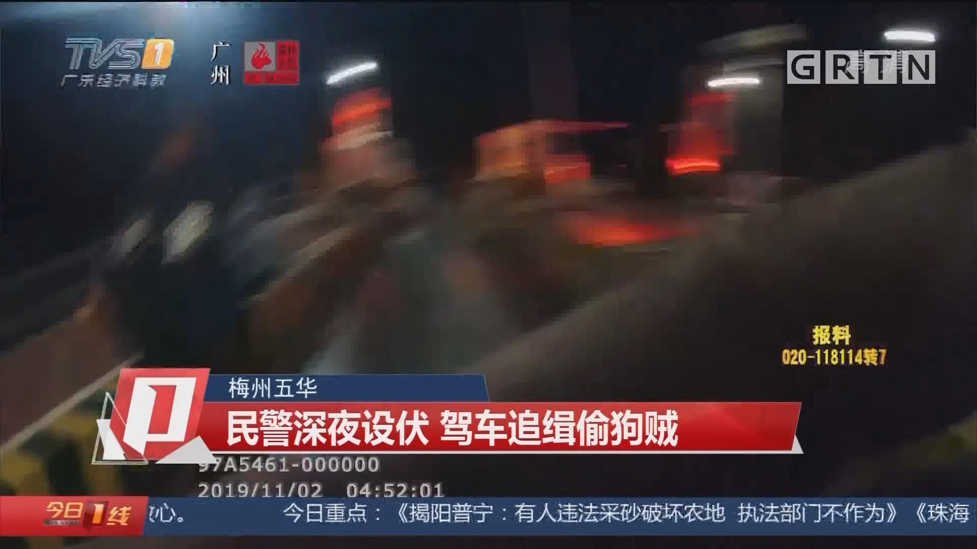 梅州五华:民警深夜设伏 驾车追缉偷狗贼