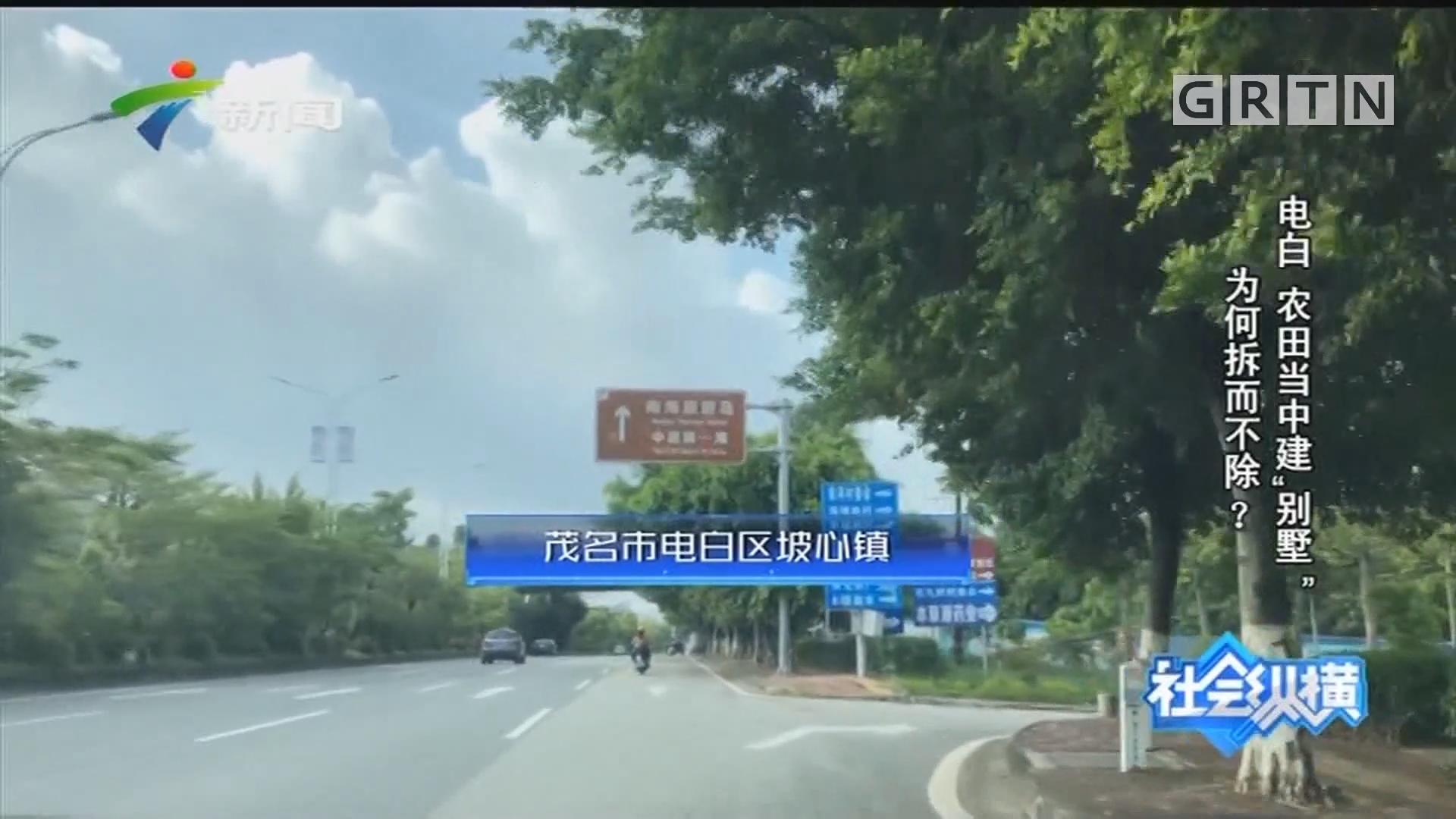 """[HD][2019-11-01]社会纵横:电白 农田当中建""""别墅"""" 为何拆而不除?"""