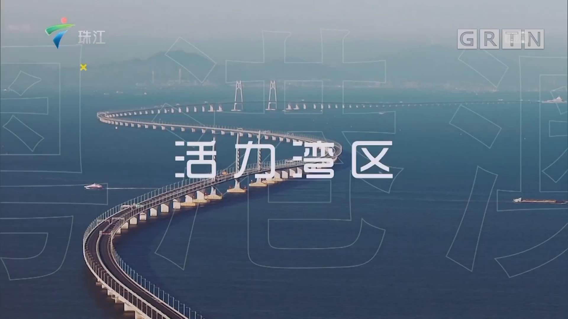 [HD][2019-11-09]湾区生活圈