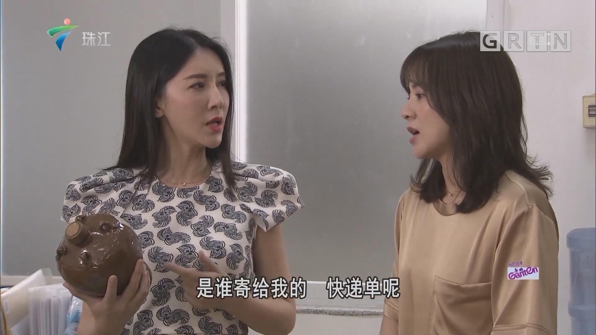 [HD][2019-11-03]外来媳妇本地郎:盛女的逆袭(上)