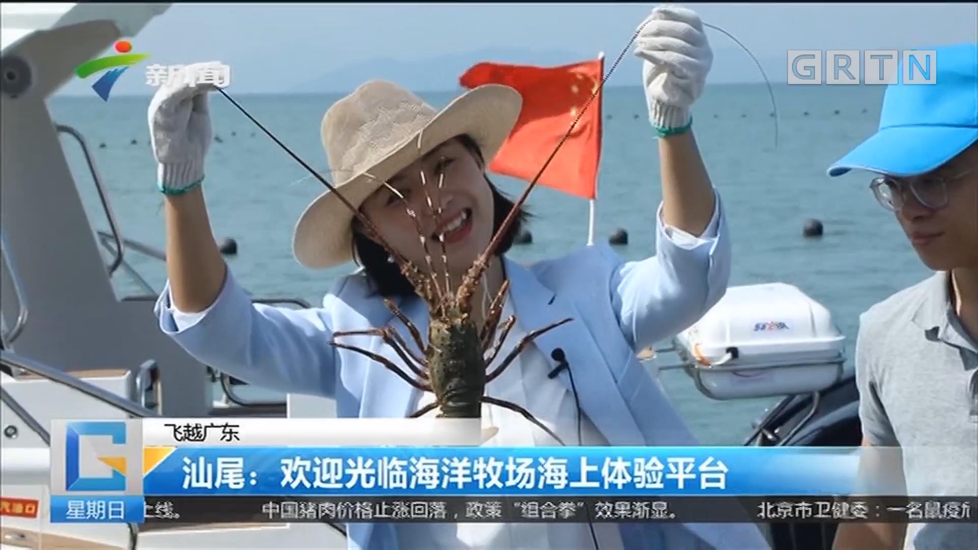 飞越广东 汕尾:欢迎光临海洋牧场海上体验平台