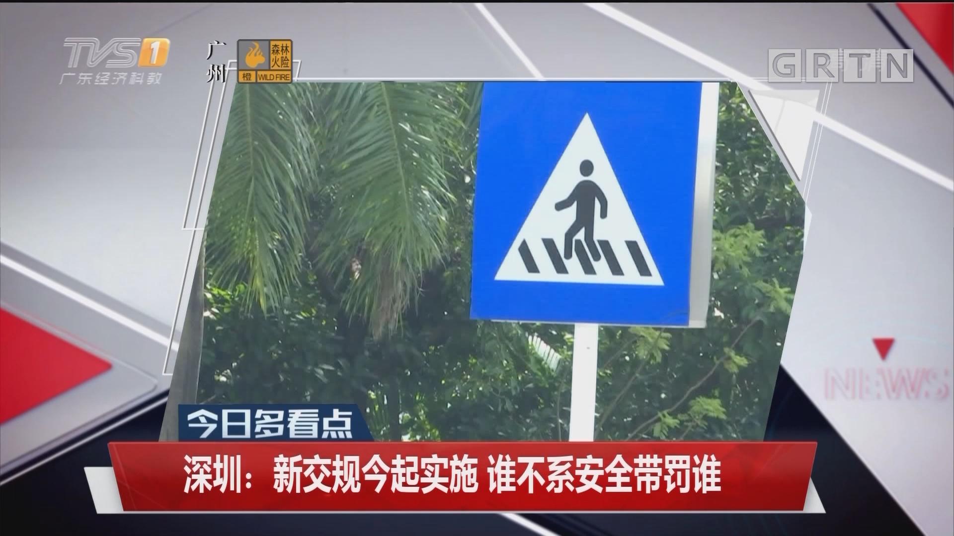 深圳:新交规今起实施 谁不系安全带罚谁