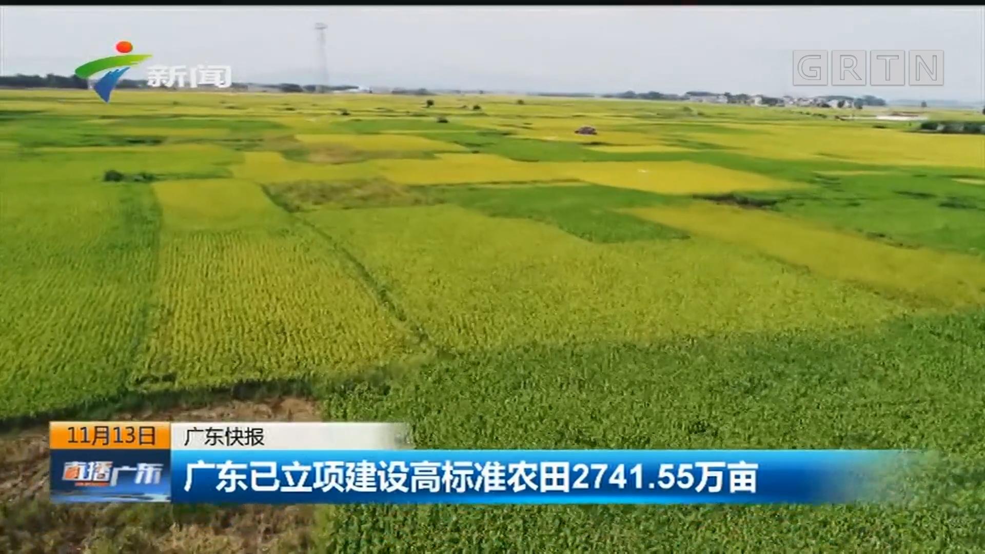 广东已立项建设高标准农田2741.55万亩