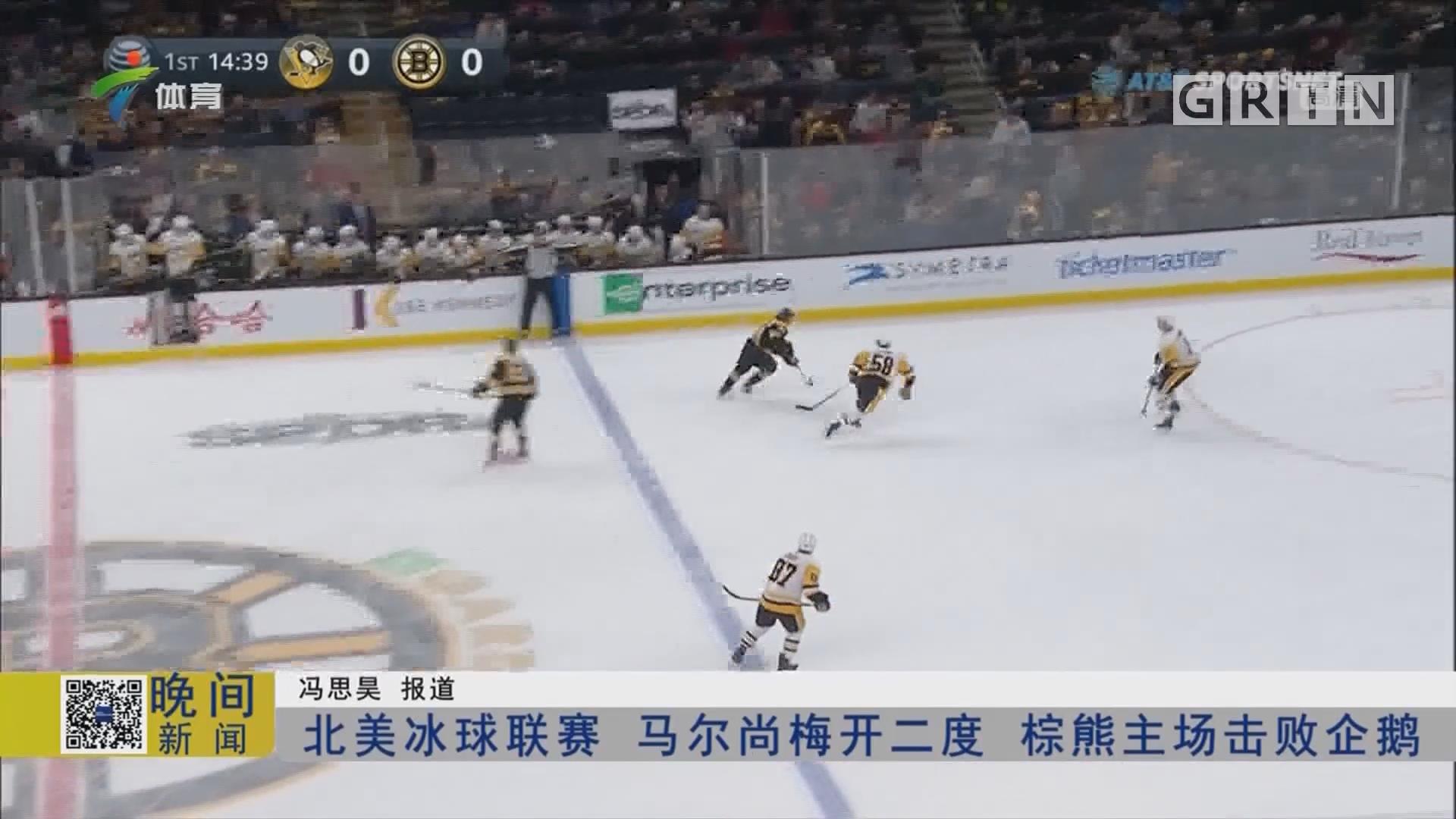 北美冰球联赛 马尔尚梅开二度 棕熊主场击败企鹅