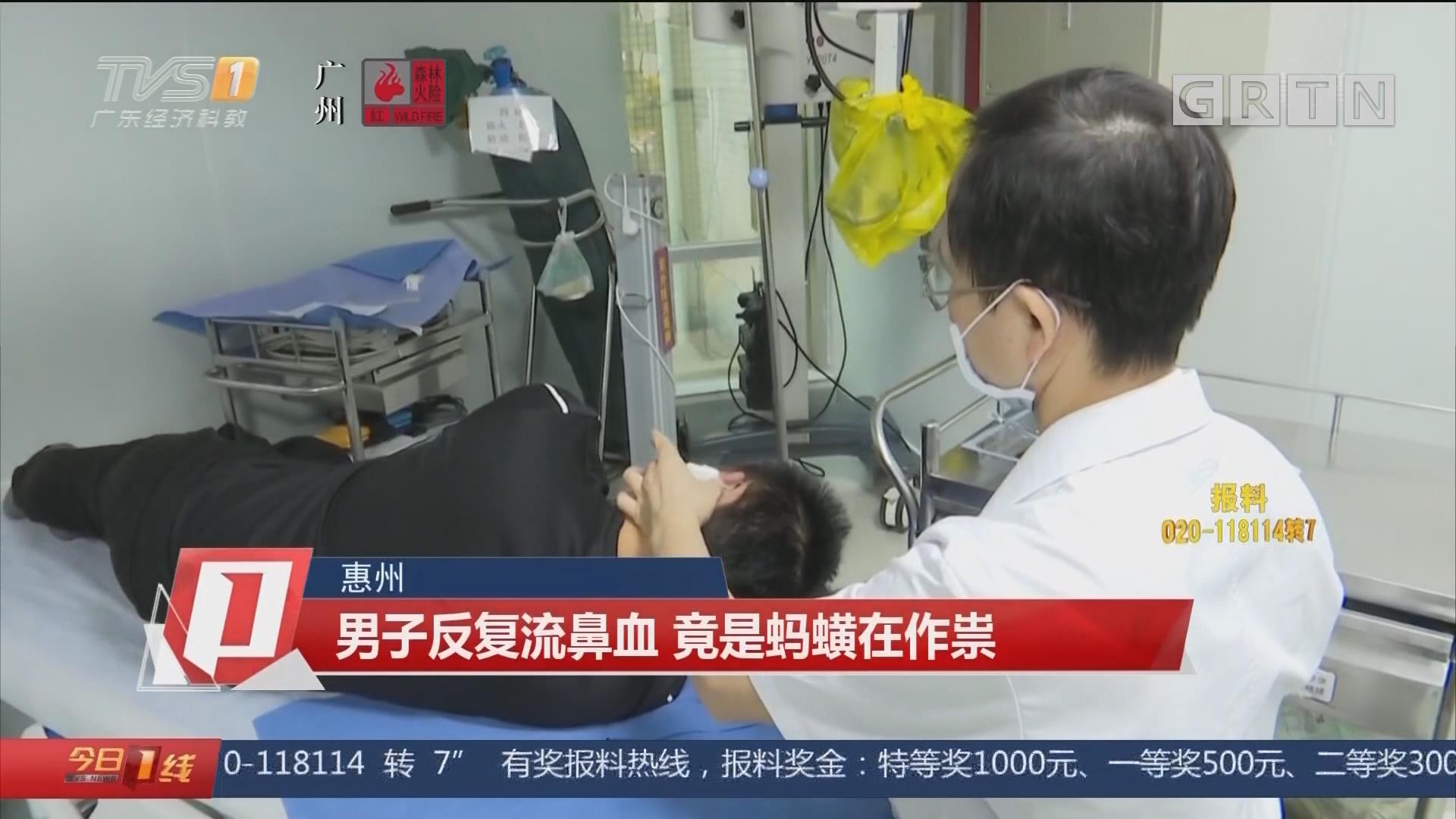 惠州:男子反复流鼻血 竟是蚂蟥在作祟