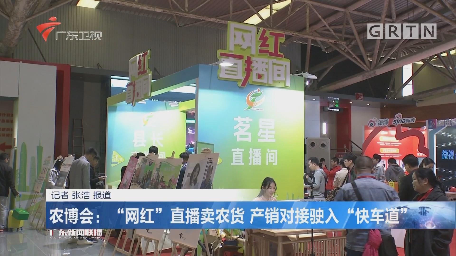 """农博会:""""网红""""直播卖农货 产销对接驶入""""快车道"""""""