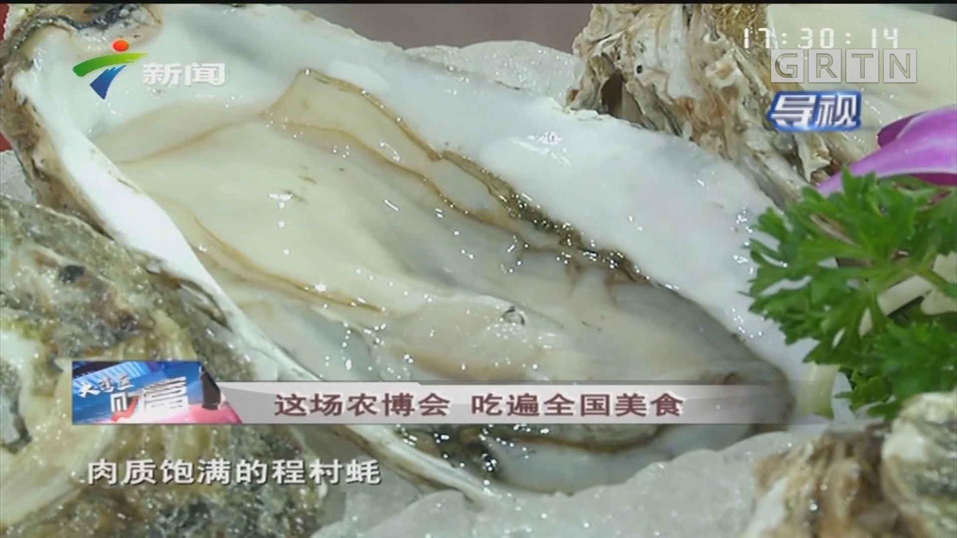 [HD][2019-12-07]大湾区财富通:这场农博会 吃遍全国美食
