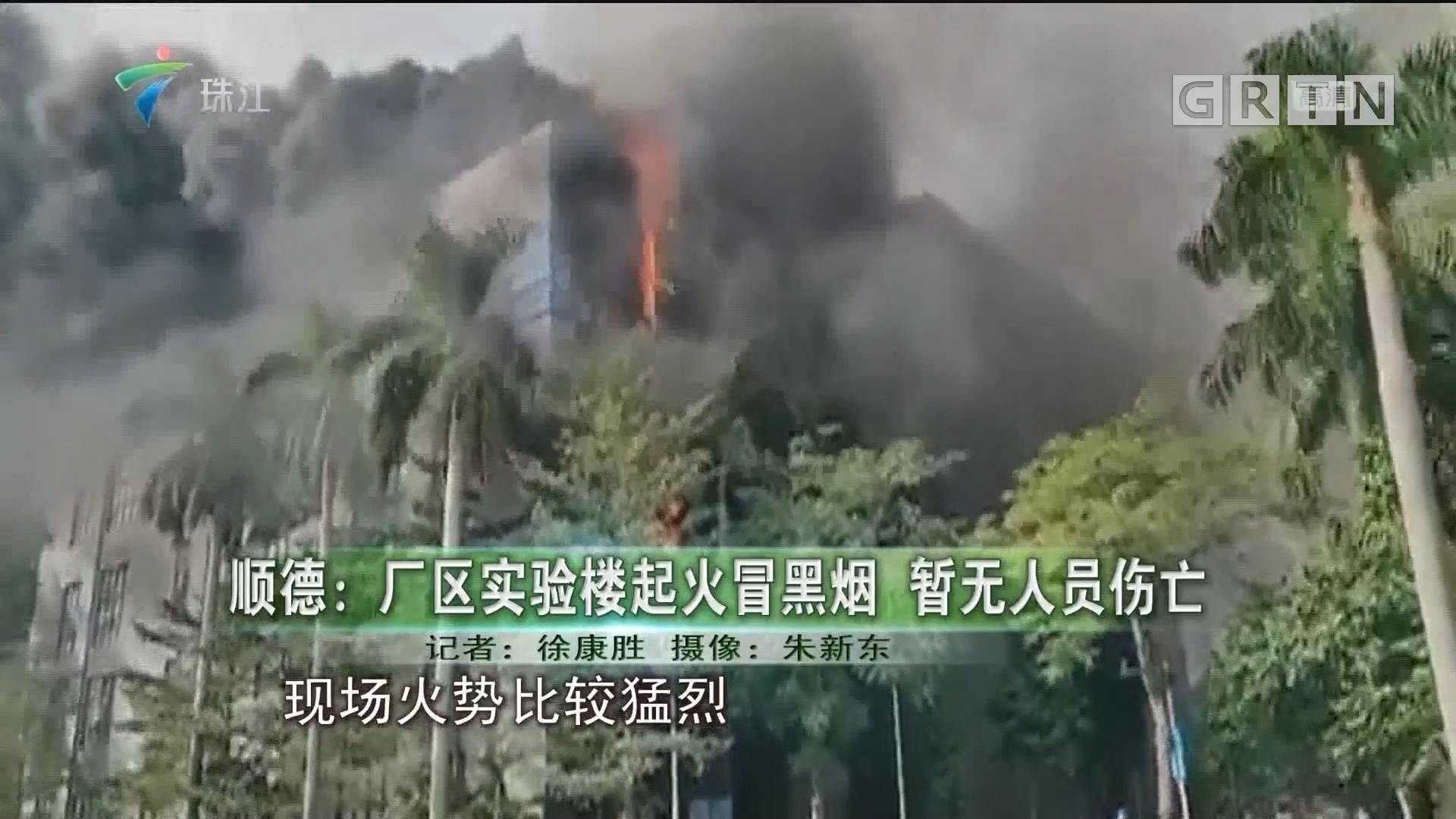 顺德:厂区实验楼起火冒黑烟 暂无人员伤亡
