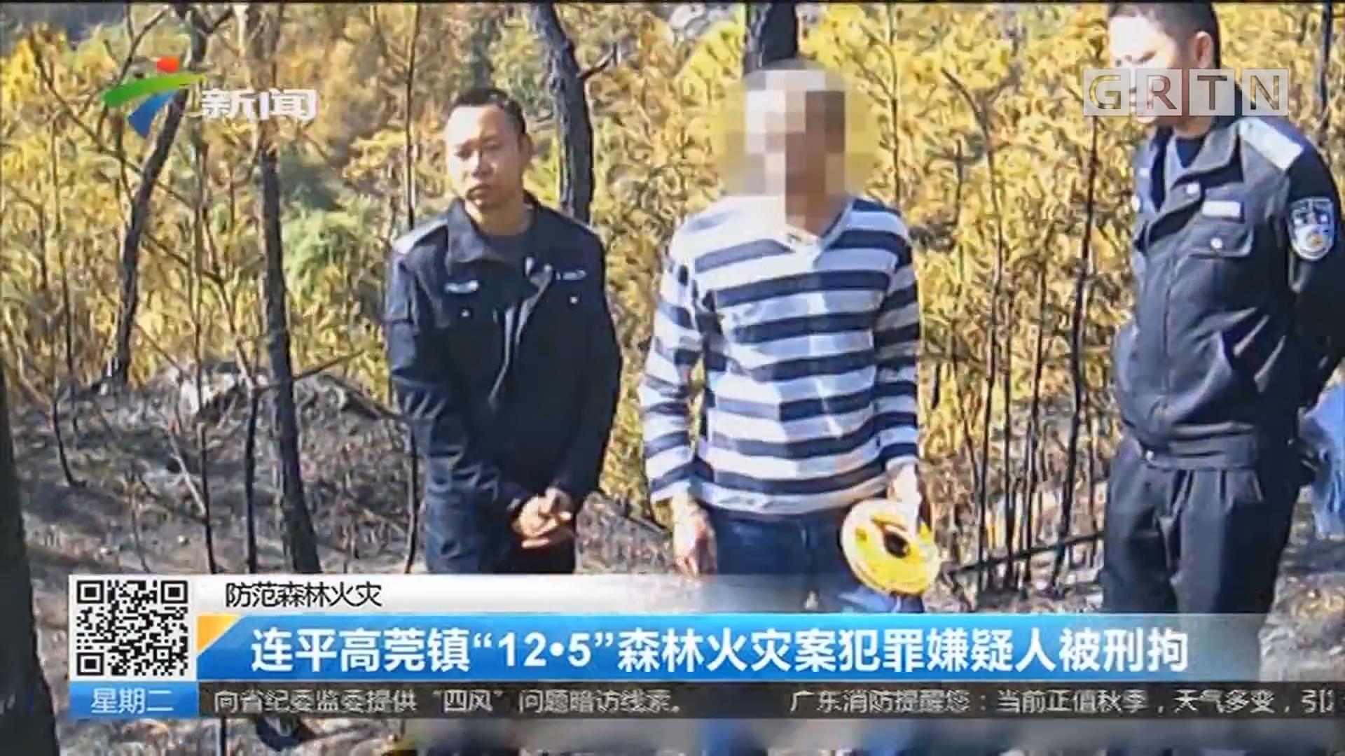 """防范森林火灾:连平高莞镇""""12·5""""森林火灾案犯罪嫌疑人被刑拘"""