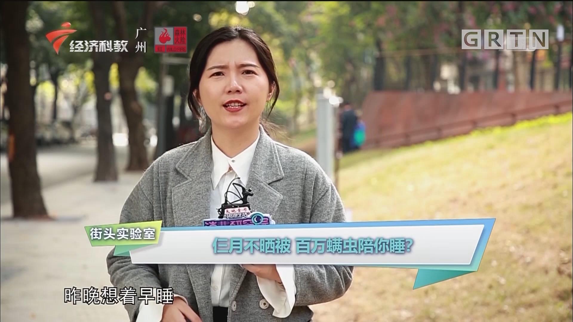 [HD][2019-12-23]消费研究院:街头实验室:仨月不晒被 百万螨虫陪你睡?