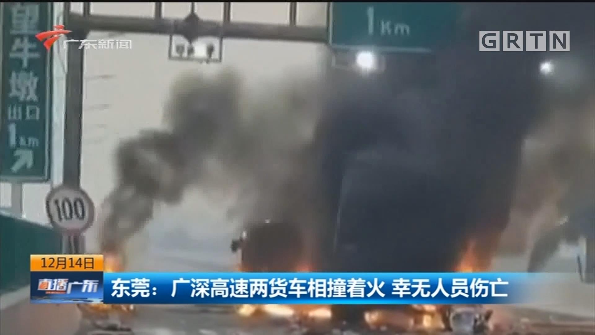 东莞:广深高速两货车相撞着火 幸无人员伤亡