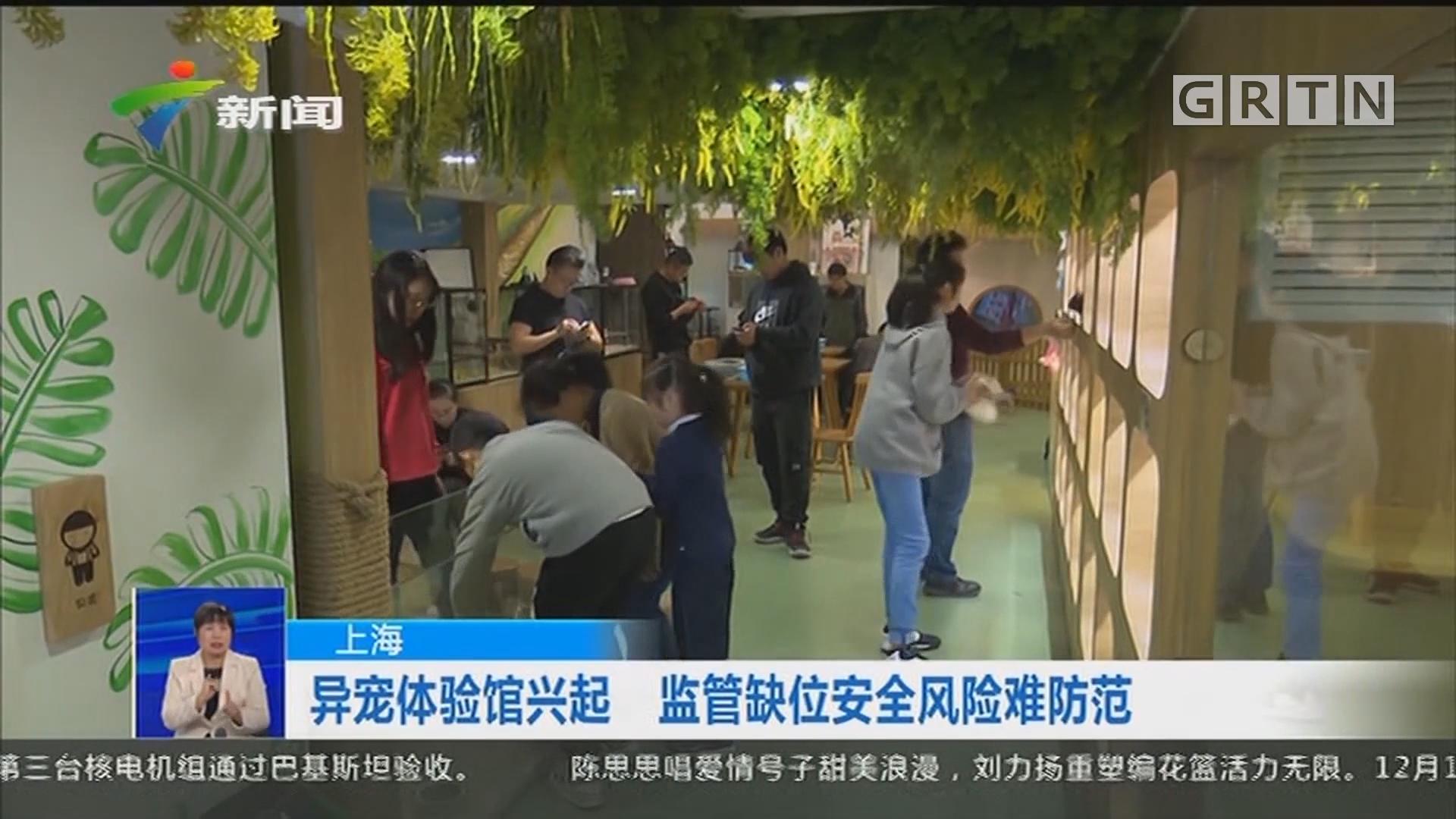 上海:异宠体验馆兴起 监管缺位安全风险难防范