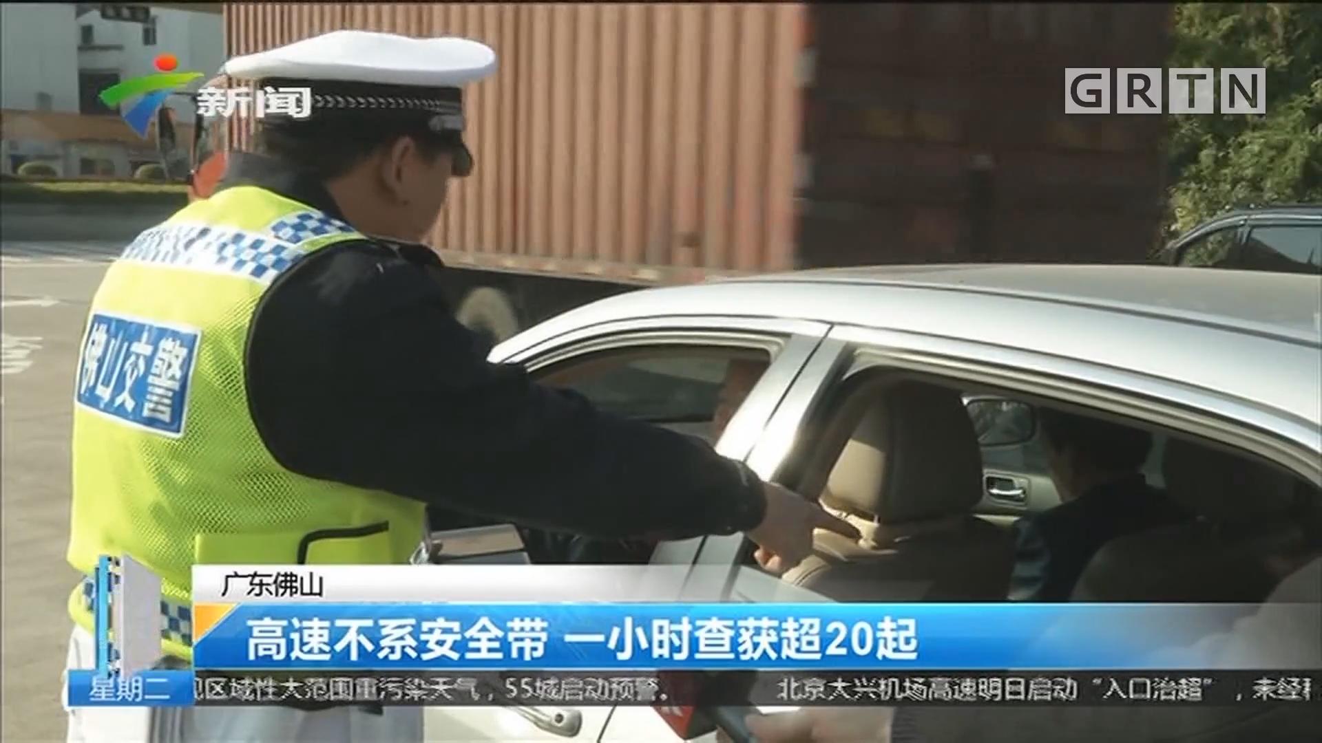 广东佛山:高速不系安全带 一小时查获超20起