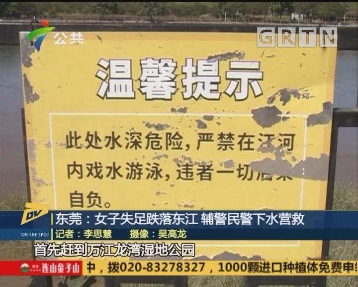 (DV现场)东莞:女子失足跌落东江 辅警民警下水营救