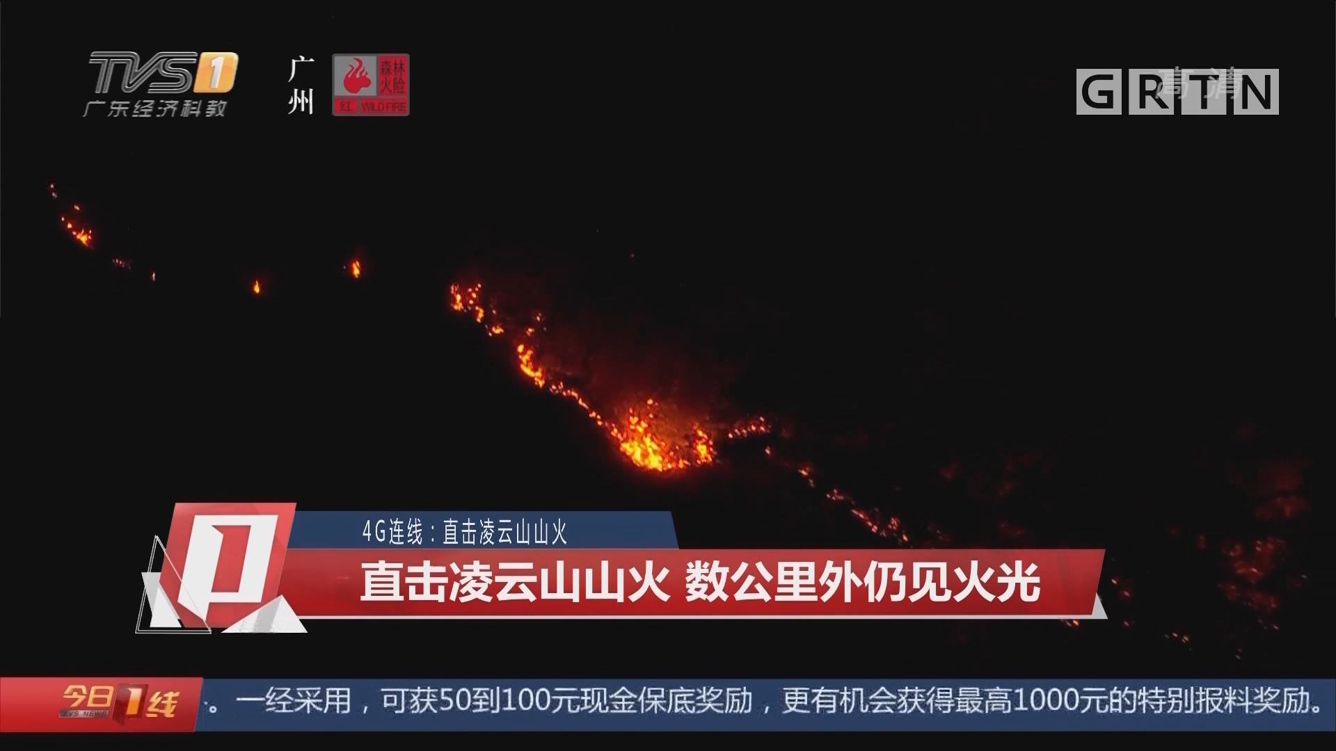 4G连线:直击凌云山山火 直击凌云山山火 数公里外仍见火光