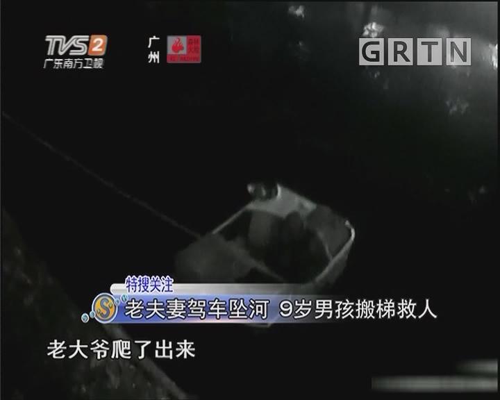 老夫妻驾车坠河 9岁男孩搬梯救人