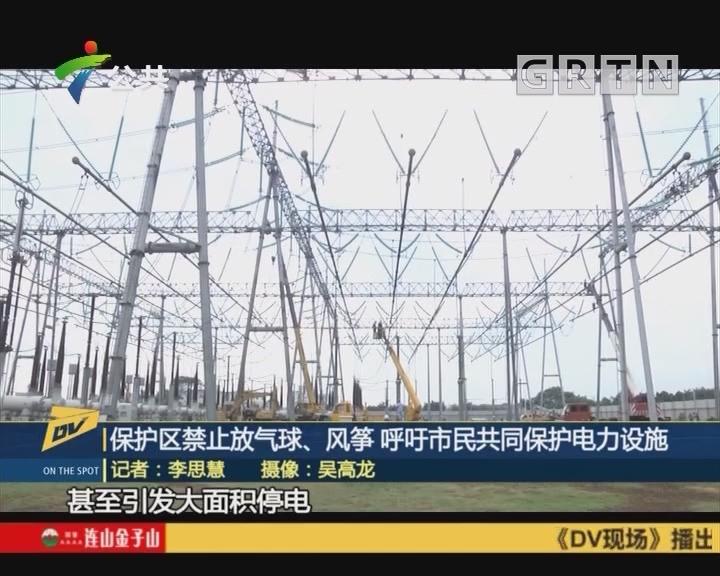 (DV现场)保护区禁止放气球、风筝 呼吁市民共同保护电力设施