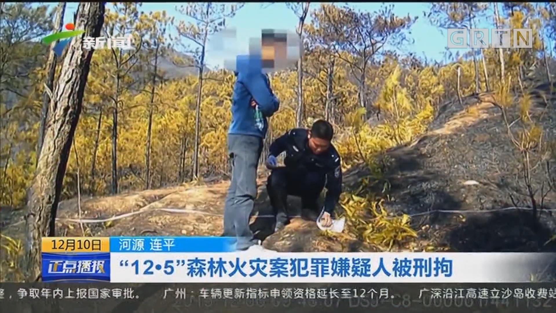 """河源 连平 """"12·5""""森林火灾案犯罪嫌疑人被刑拘"""
