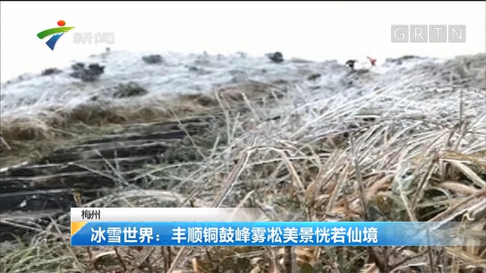 梅州 冰雪世界:丰顺铜鼓峰雾凇美景恍若仙境