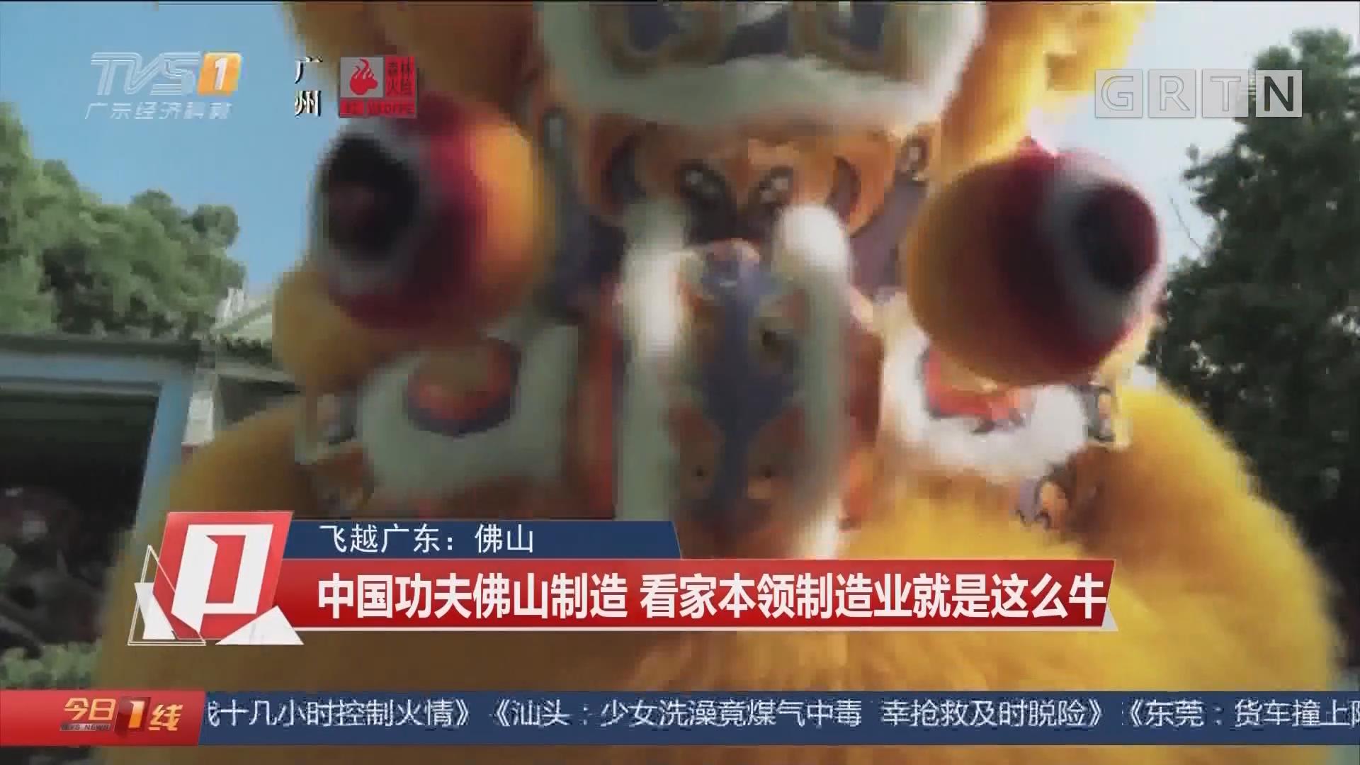 飞越广东:佛山 中国功夫佛山制造 看家本领制造业就是这么牛