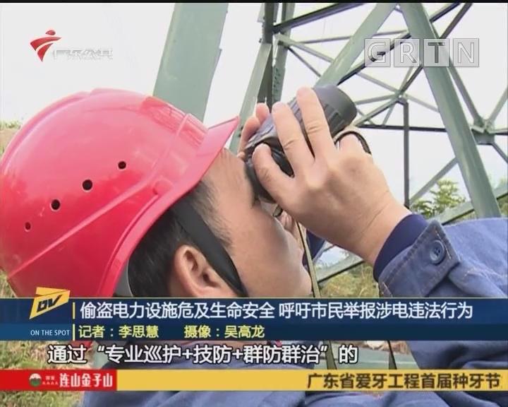 (DV现场)偷盗电力设施危及生命安全 呼吁市民举报涉电违法行为