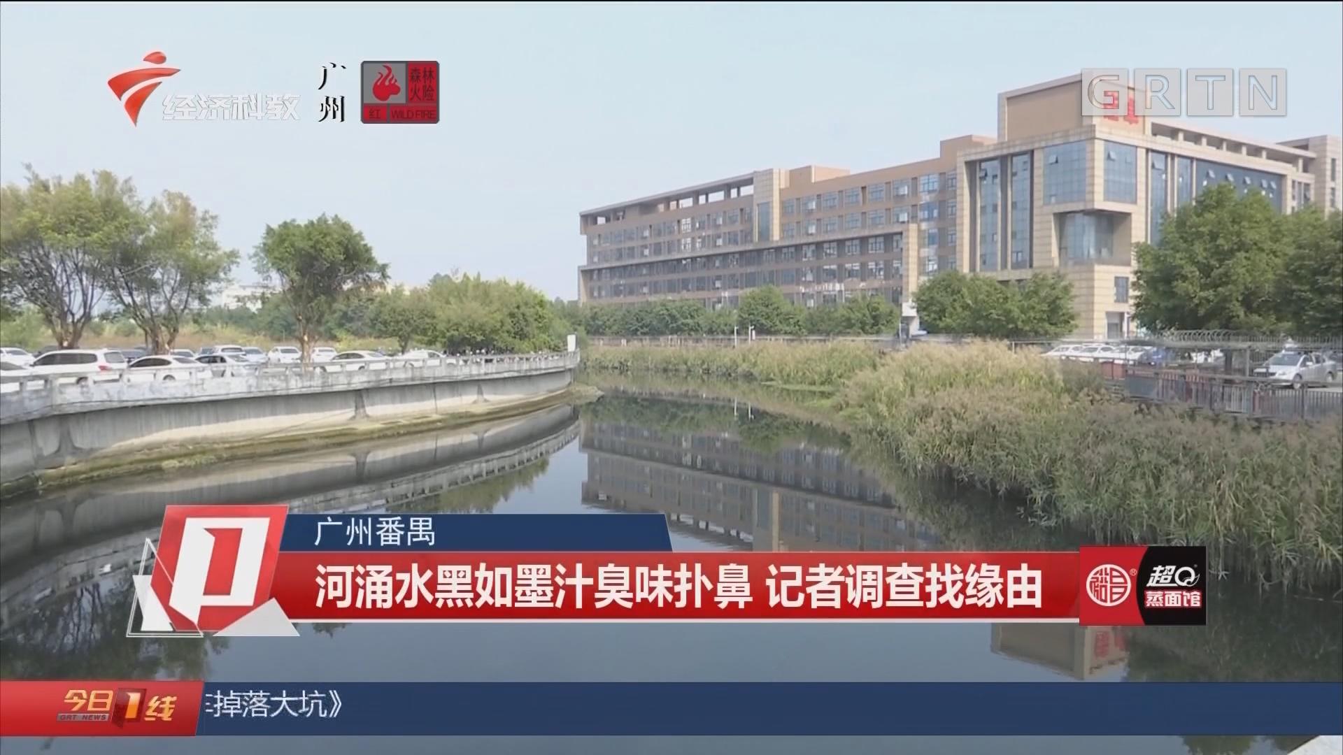 广州番禺:河涌水黑如墨汁臭味扑鼻 记者调查找缘由