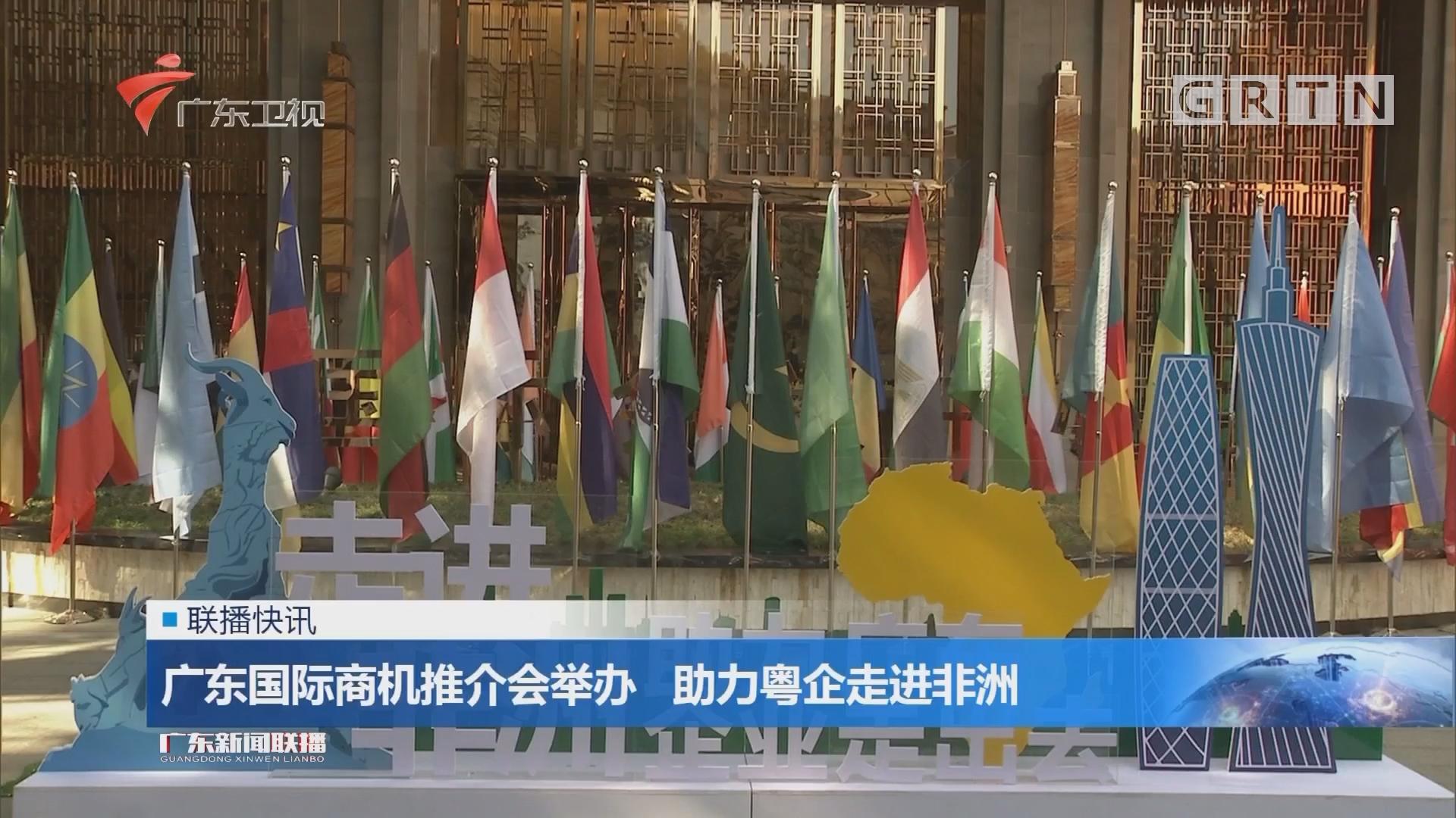 广东国际商机推介会举办 助力粤企走进非洲