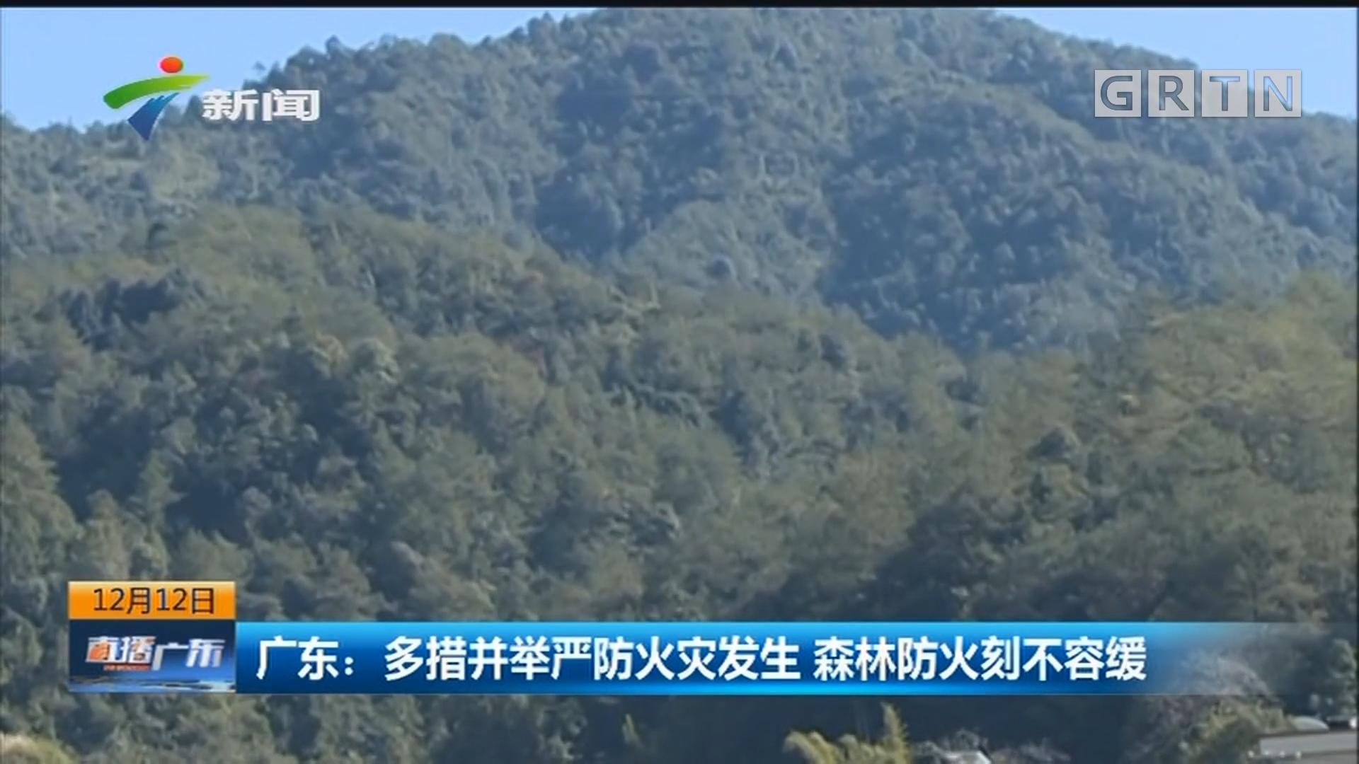 广东:多措并举严防火灾发生 森林防火刻不容缓