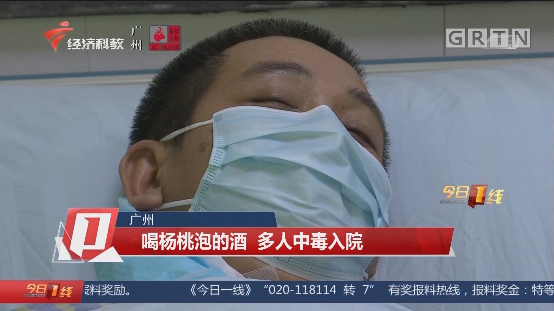 广州 喝杨桃泡的酒 多人中毒入院