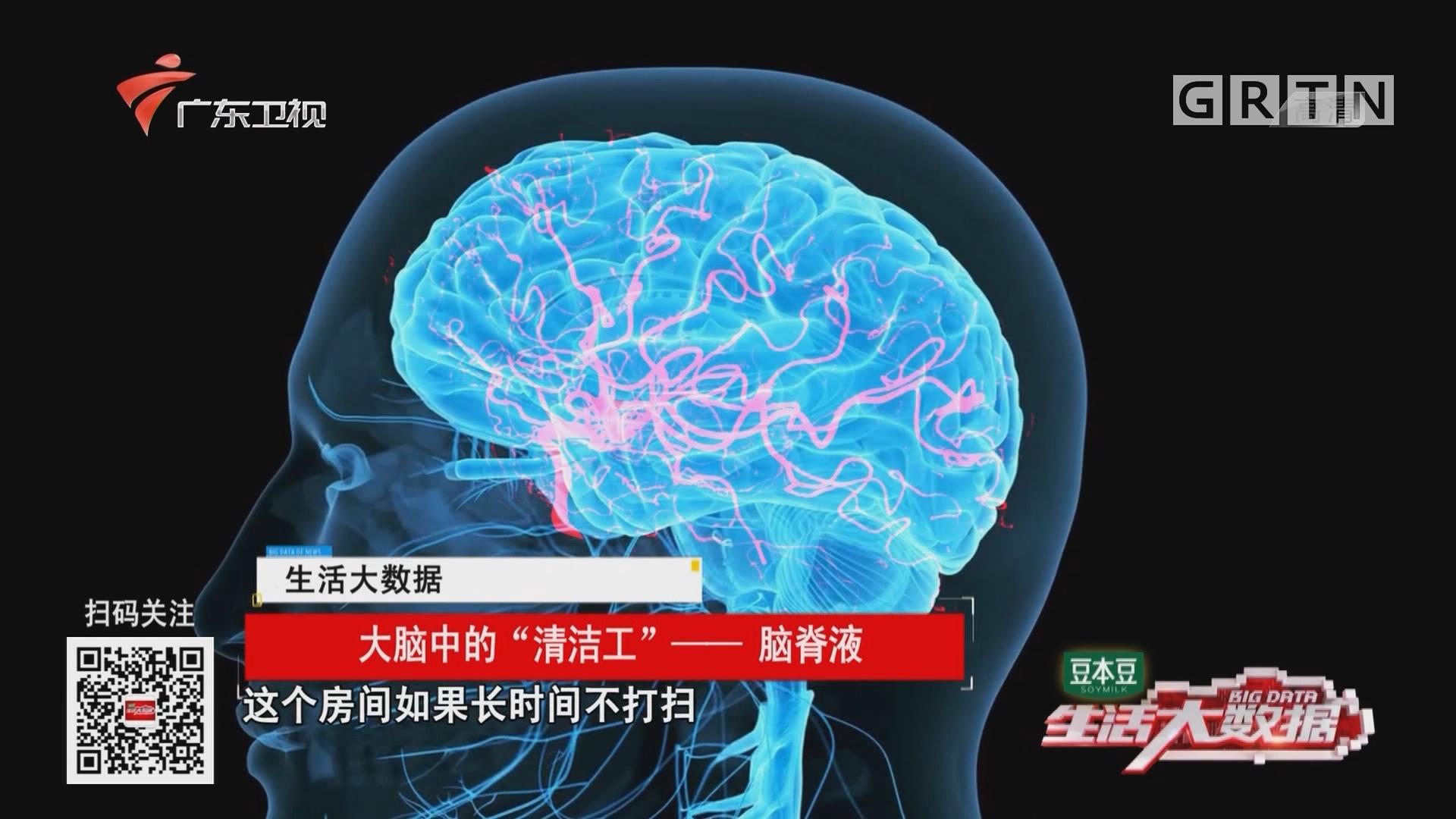 """大脑中的""""清洁工""""——脑脊液"""
