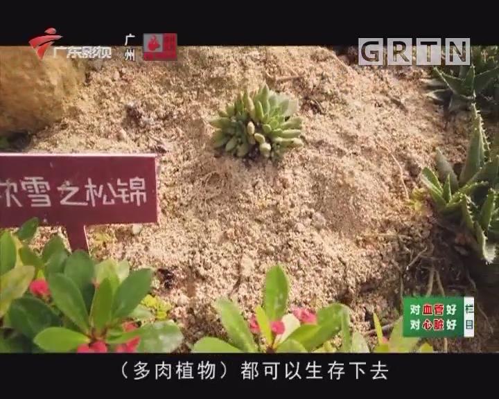 [2019-12-12]乐享新生活-智活大湾区