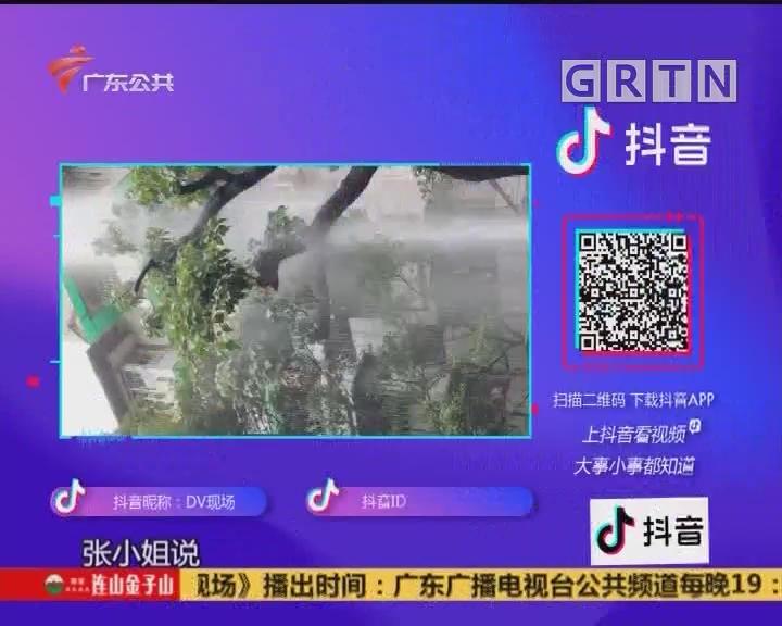 (DV现场)抖音随手拍-爆料视频