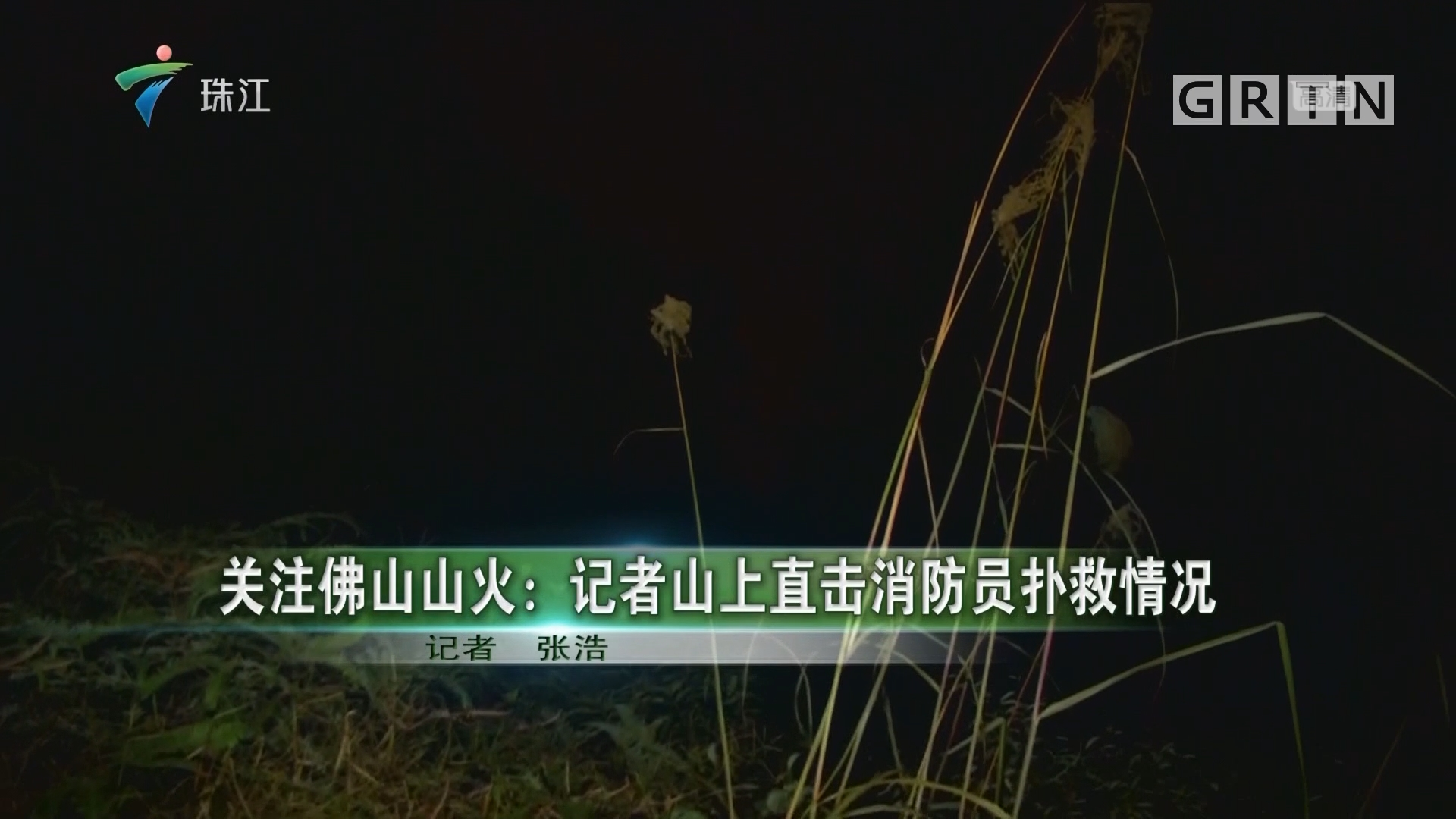 关注佛山山火:记者山上直击消防员扑救情况
