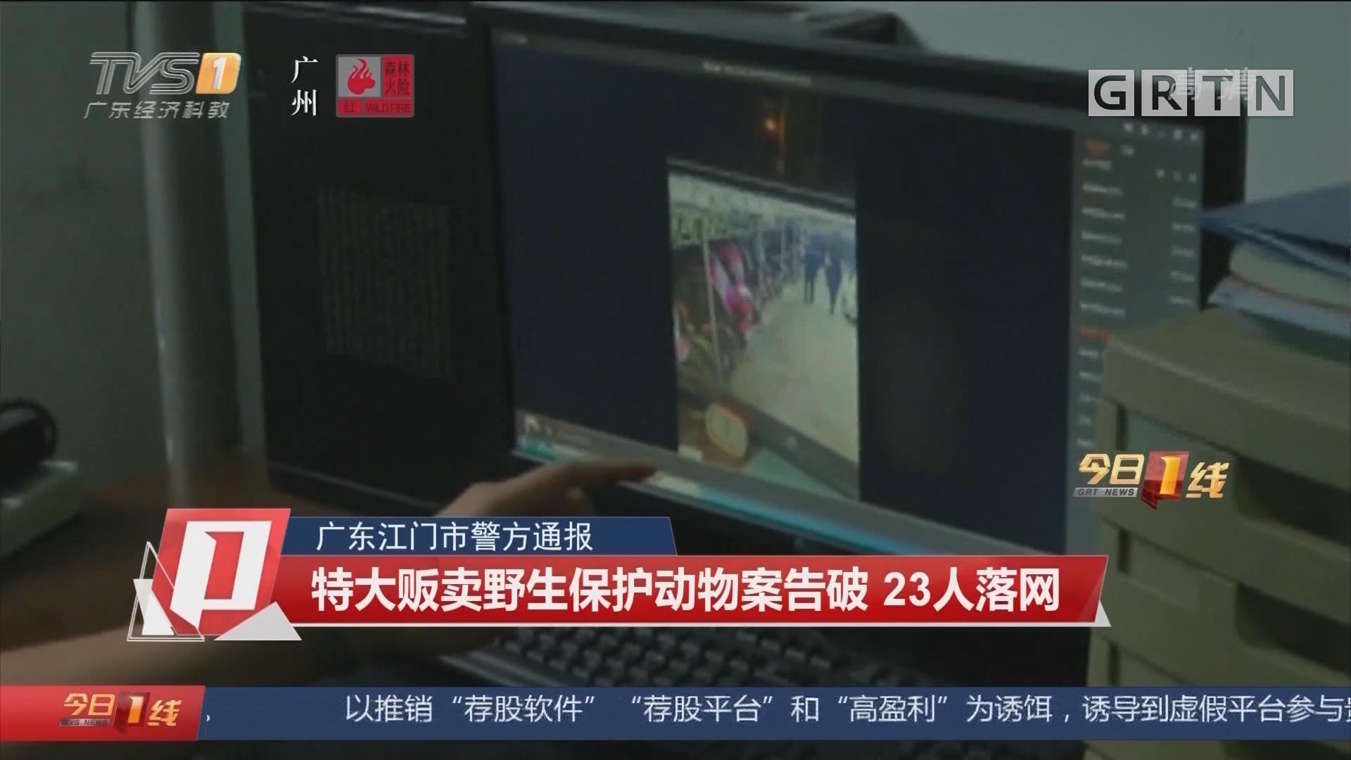 广东江门市警方通报 特大贩卖野生保护动物案告破 23人落网