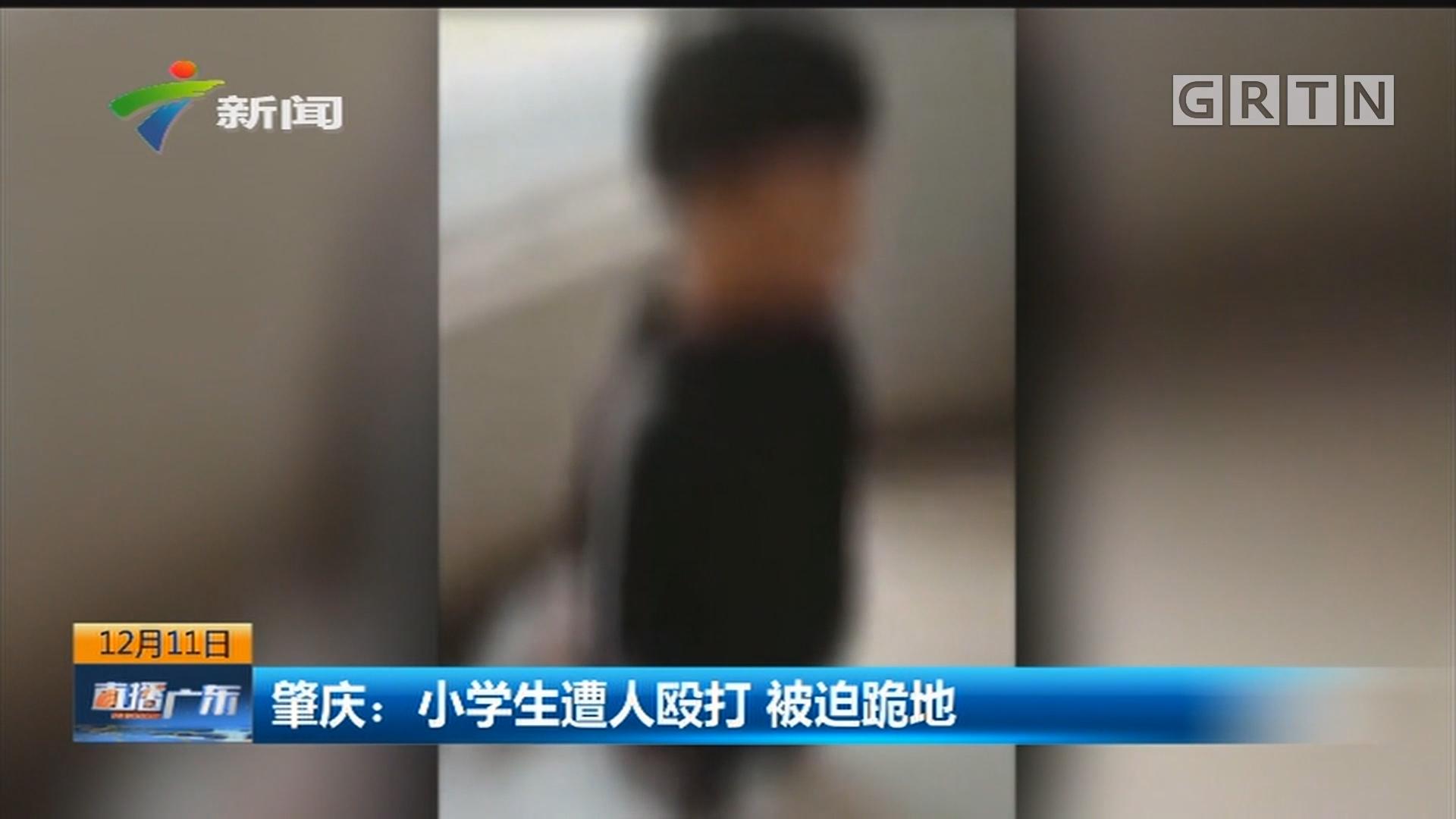肇庆:小学生遭人殴打 被迫跪地
