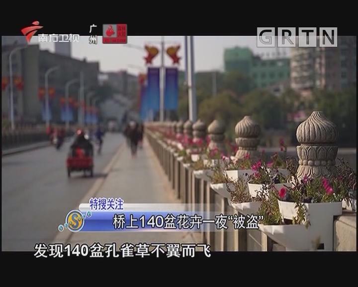 """桥上140盆花卉一夜""""被盗"""""""