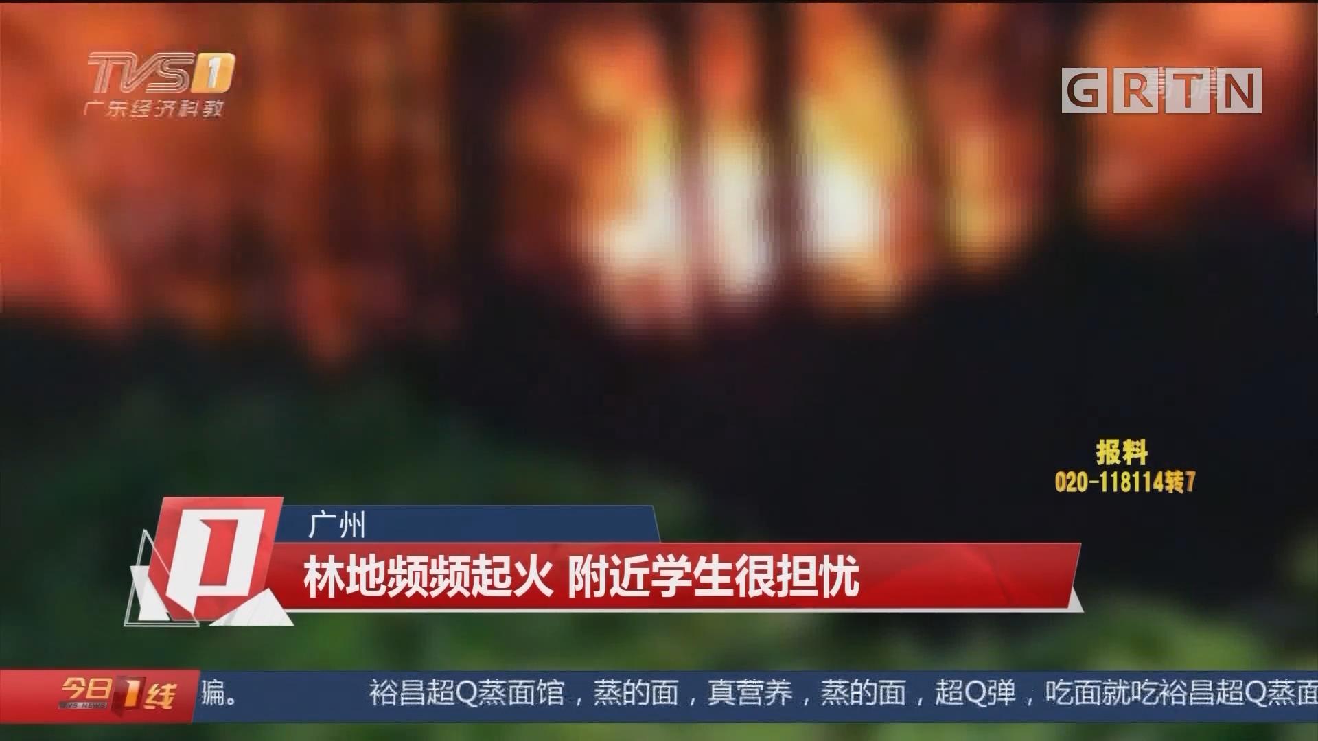 广州 林地频频起火 附近学生很担忧
