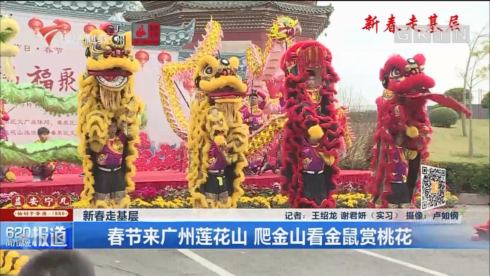 新春走基层:春节来广州莲花山 爬金山看金鼠赏桃花