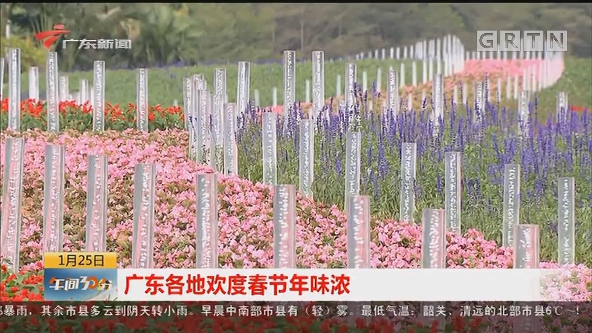 广东各地欢度春节年味浓
