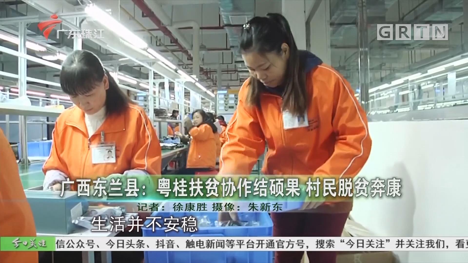 广西东兰县:粤桂扶贫协作结硕果 村民脱贫奔康