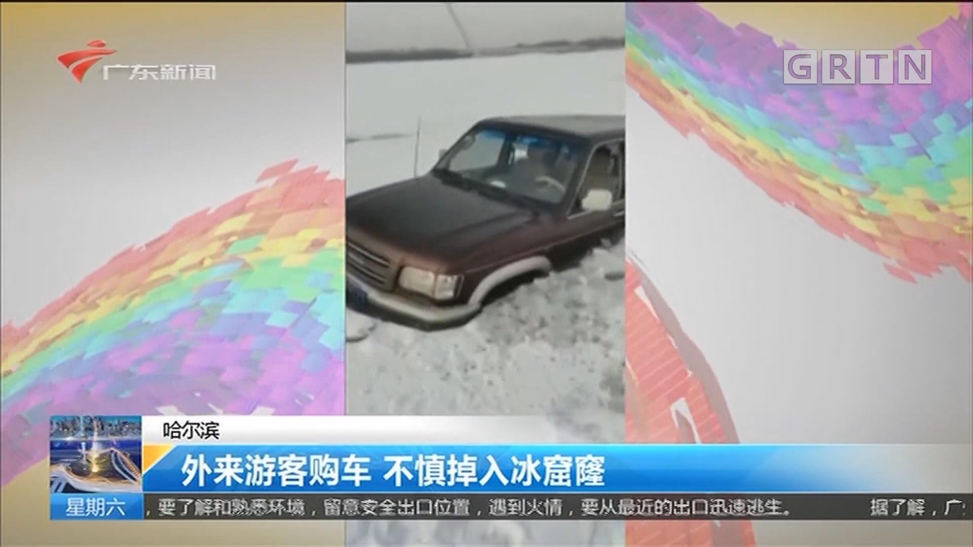 哈尔滨:外来游客购车 不慎掉入冰窟窿